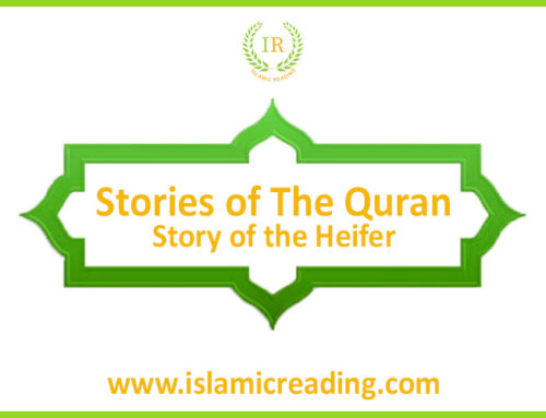 Stories of Quran: The Story of the Heifer
